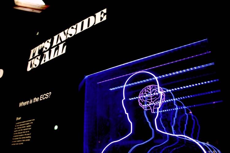 """Som texten lyder """"It's inside us all"""", så har vi alla möjligheten till att stimulera minnet på ett så effektivt sätt som möjligt."""